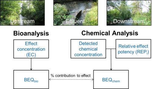 Combining Chemical & Biological Analyses